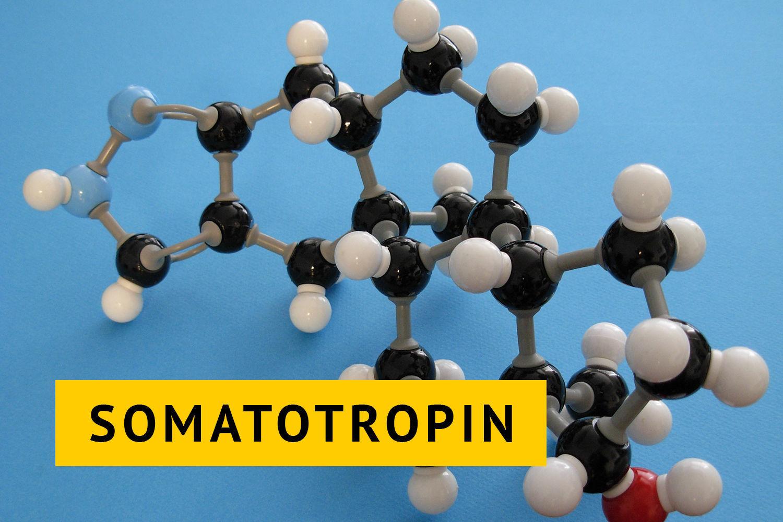 O-gormone-rosta
